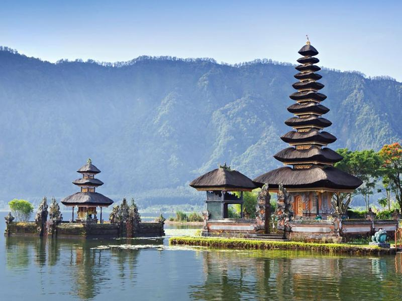 4 Days-3 Nights Bali Dolphin Tour