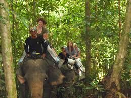 08 Days North – West Sumatra Overland Tour (included Orangutans)