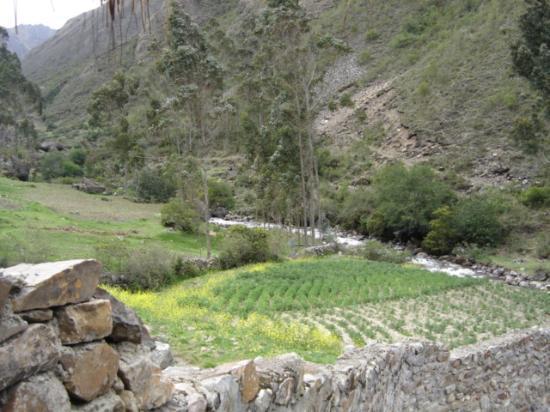 Weaver Trek To Machu Picchu 4d/3n Tour