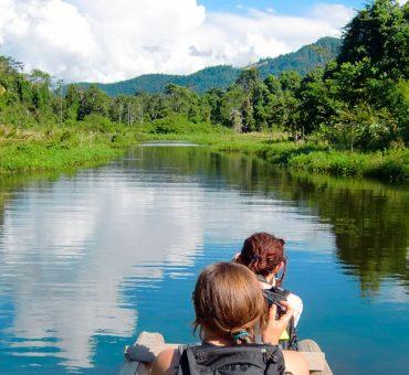 Manu Cloud Forest Tour