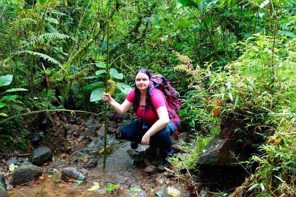 Rainforest Explorer Tour