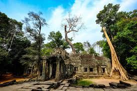 Angkor Wat 3 Full Days Tuk Tuk & English Speaking Driver