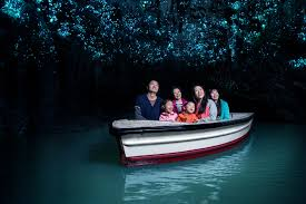 Waitomo Caves Tour Package