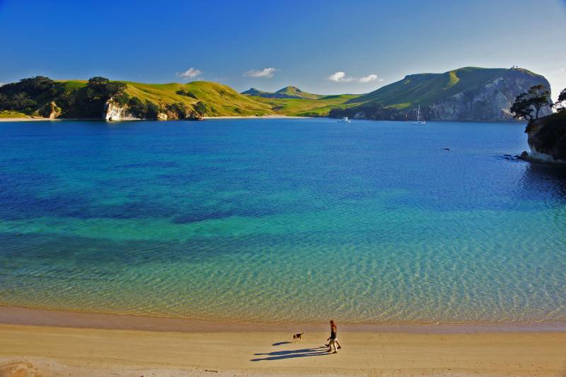 Coromandel Sleepover Package
