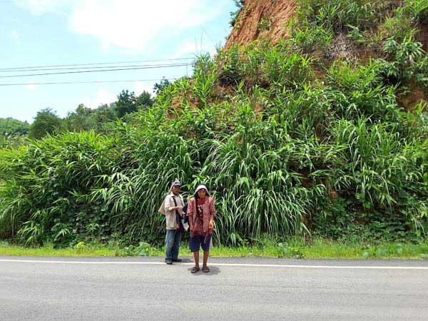 Chiangrai Trekking Tour Package