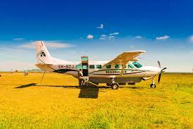 Fly In Safari Day Trip Tour