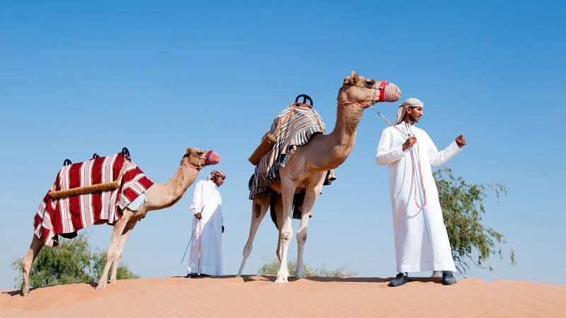 Tour Of Fujairah From Fujairah And Ras Al Khaimah
