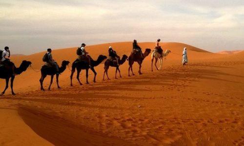 Quad Biking Dubai – Desert Safari Tour Packages