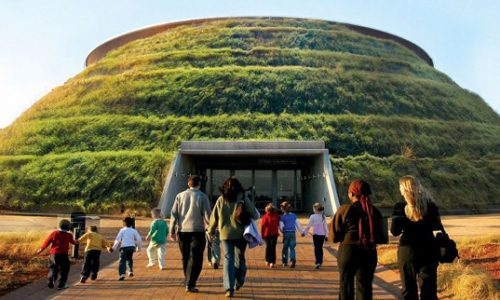 Full Day Cradle Of Humankind, Sterkfontein Caves And Lion Park Tour