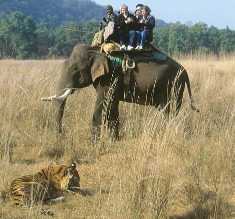 Three Night Dhikala And Bijrani Tour Package