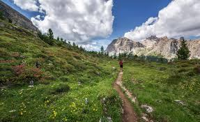 Trek The Enchanting Dzukou Valley Tour