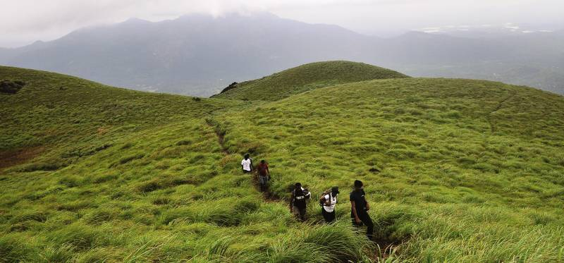 Best Trekking Wayanad Package