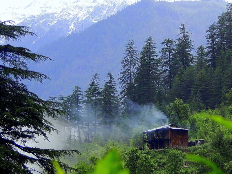 Kullu Manali Shimla Honeymoon Tour Packages From Hyderabad