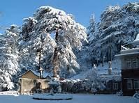 Kullu Manali Shimla Honeymoon Tour Packages From Bhimavaram