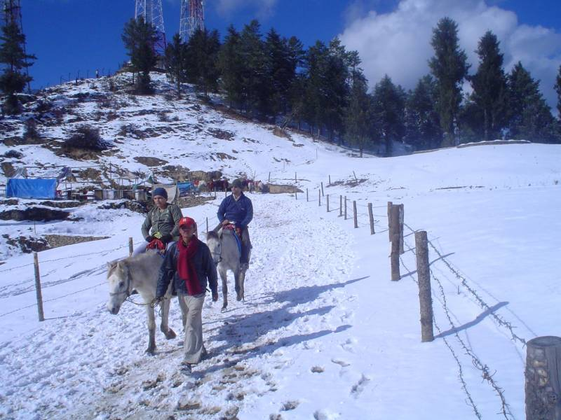 Kullu Manali Shimla Honeymoon Tour Packages From Mandoli