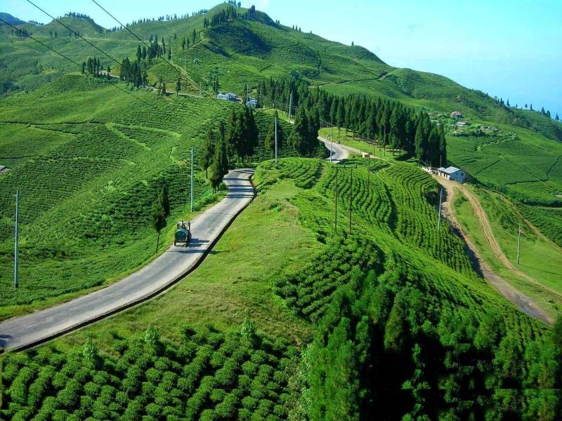 Kullu Manali Shimla Honeymoon Tour Packages From Bagalkot
