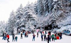 Kullu Manali Shimla Honeymoon Tour Packages From Tonk