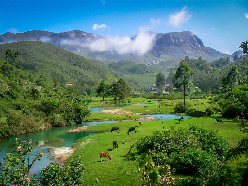 Riveting Kerala Tour