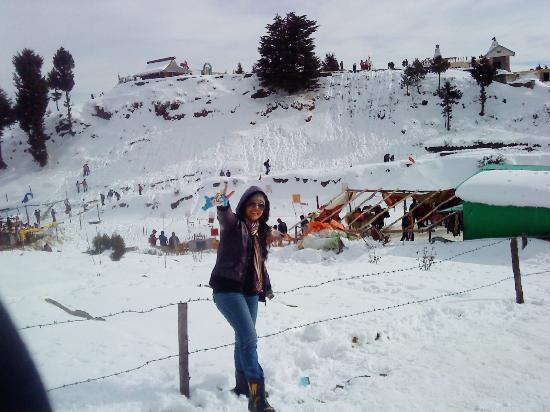 Glimpses Of Himachal Pradesh Tour