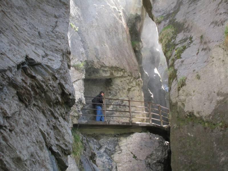 Swiss Peaks Tour