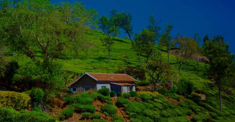 Kerala, Golden Triangle And Goa Tour