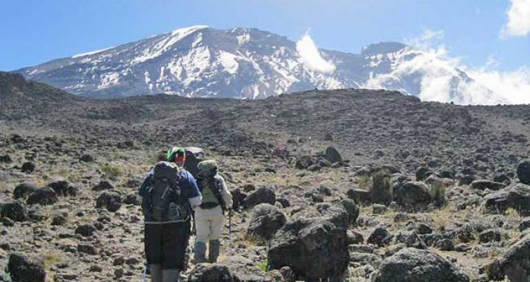 Kilimanjaro Trekking Via Shira Route Package