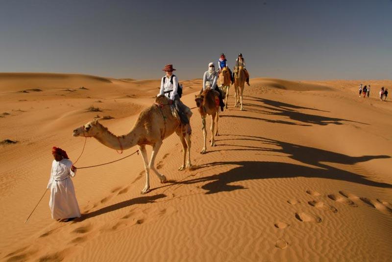 Free And Easy Dubai Tour