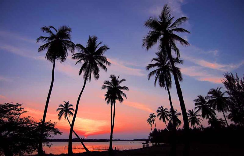 Mini Vacation – Sri Lanka 3 Days 2 Nights Tour