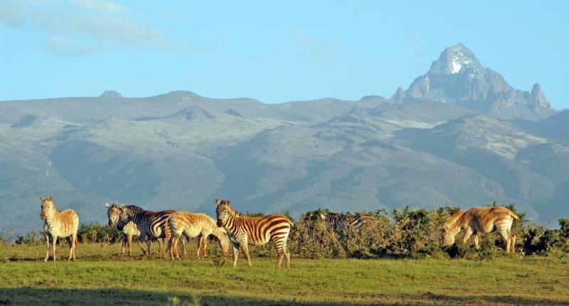 Spectacular Kenya  Tour Package