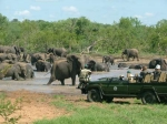 South Africa - Kruger Add On Tour Package