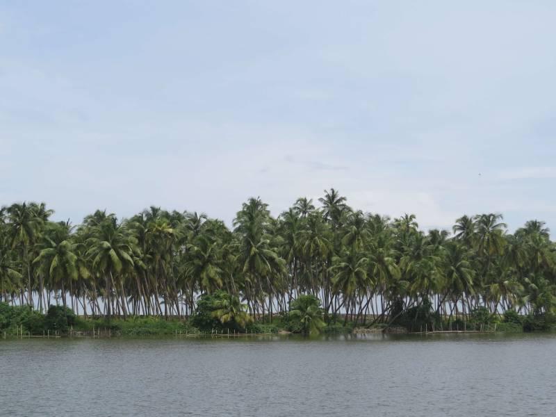 Kerala Special Tour - Cochin 1n - Munnar 2n - Thekkady 1n - Alleppey 1n - Athirapally 1n Package