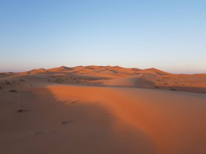 Dubai Evening Desert Safari Tour