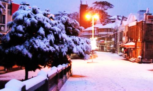 Best Tour Package In Shimla Manali