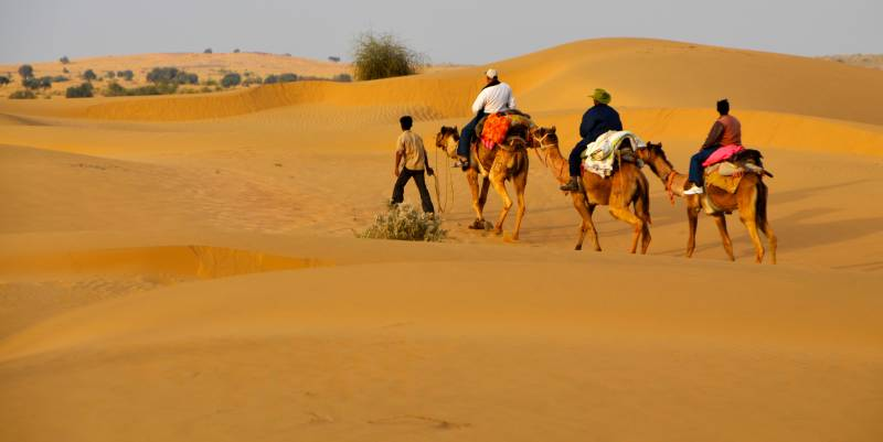 Rajasthan Camel Safari ( Enjoy The Sand Dunes & Safari Camp ) Tour