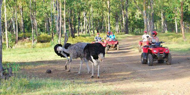 Mauritius: Adventure Tour