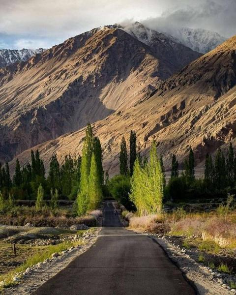 Ladakah Plus Pangong Tour
