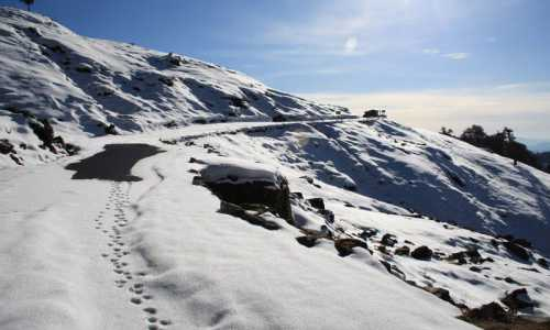 Chopta Christmas & New Year Camping With Trekking Package