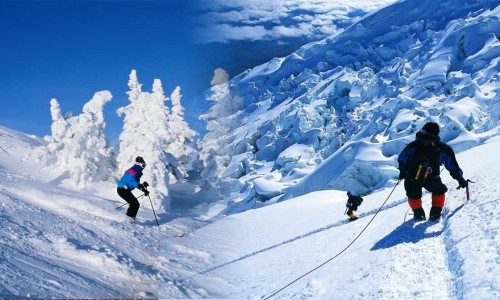 7 Days Himachal Package