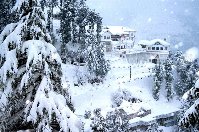 2 Nights & 3 Days Shimla Volvo Package