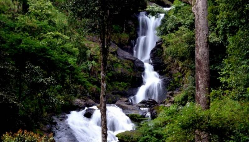 Bangalore And Coorg Package Tour