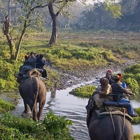 Experience North East With Tawang Tour