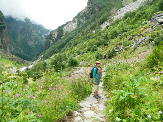 Valley Of Flowers With Hemkund Trek Tour