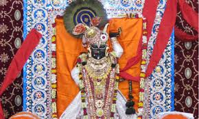 Darshan Of Lord Shreenathj Tour