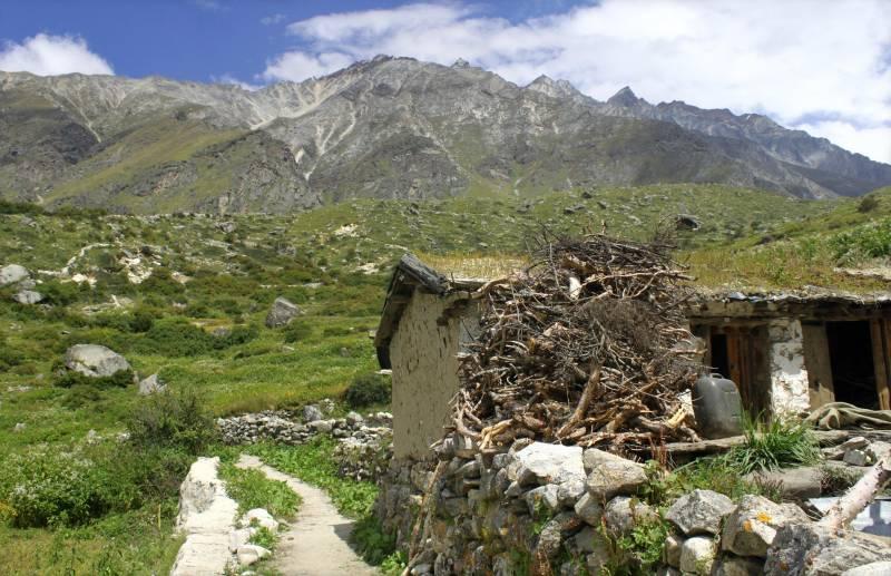 8 Days Dronagiri And Bagini Glacier Trek Tour