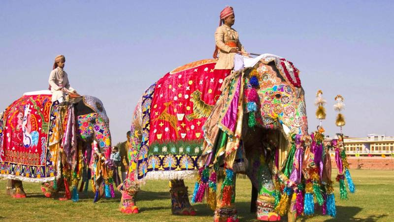 Royal Rajasthan 11 Days Tour
