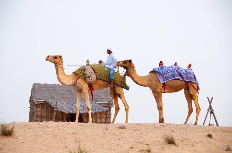 Historical Tour Of Rajasthan