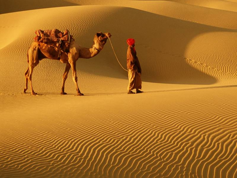 Rajasthan Tour With Sand Dunes
