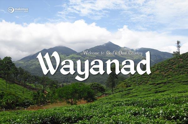 2 Nights 3 Days Wayanad