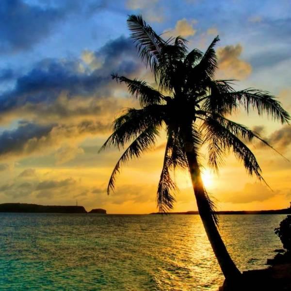Exotic Andaman 7 Nights 8 Days
