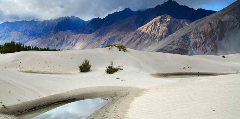 Amazing Ladakh 07 Days Tour